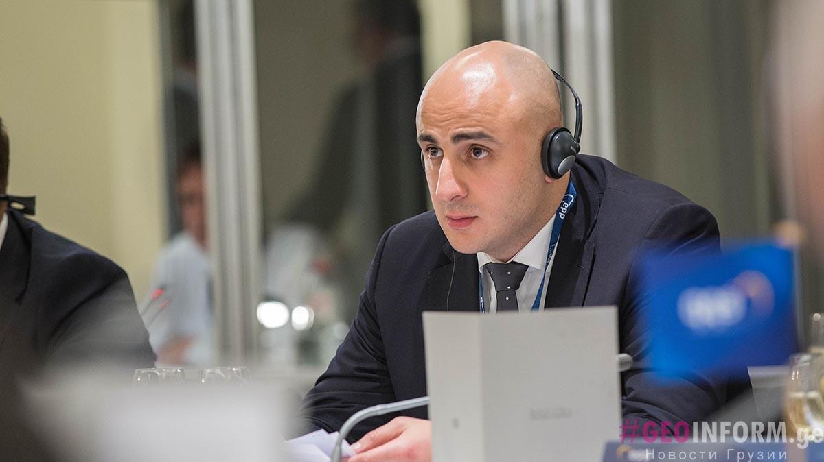 Ника Мелиа станет председателем Национального Движения