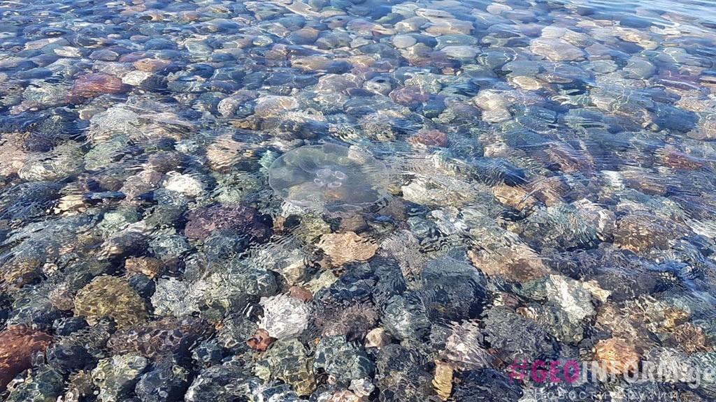 Температура воды в море в Батуми. фото -GeoInfrom.ge